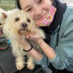 Groomer & dog